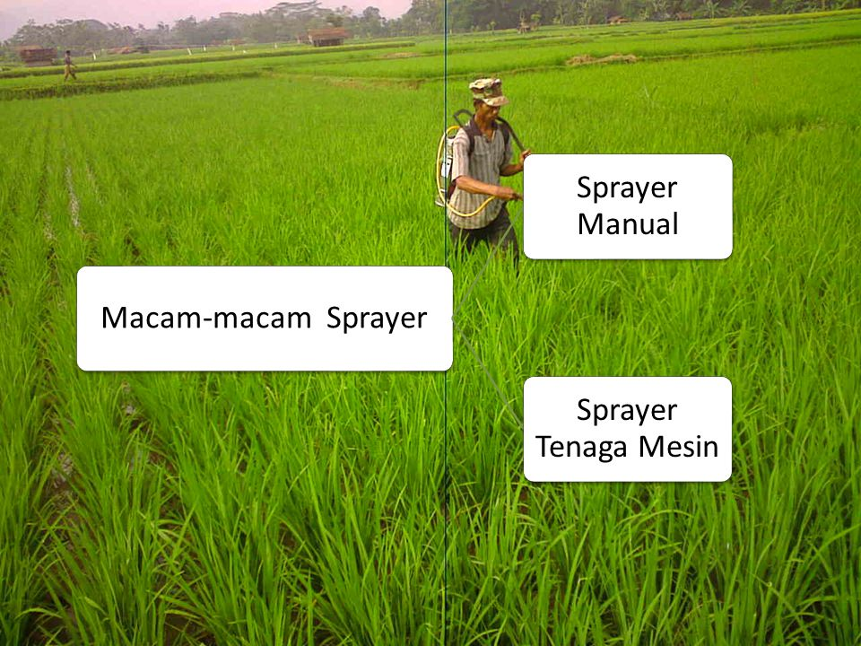 Macam-macam Sprayer Sprayer Manual Sprayer Tenaga Mesin