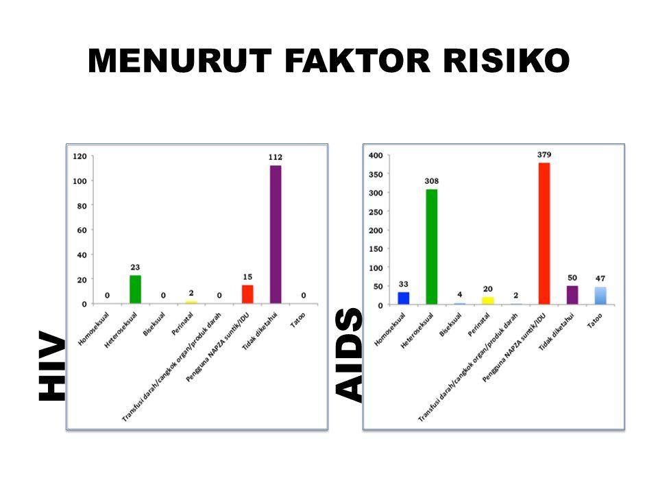 MENURUT FAKTOR RISIKO HIV AIDS