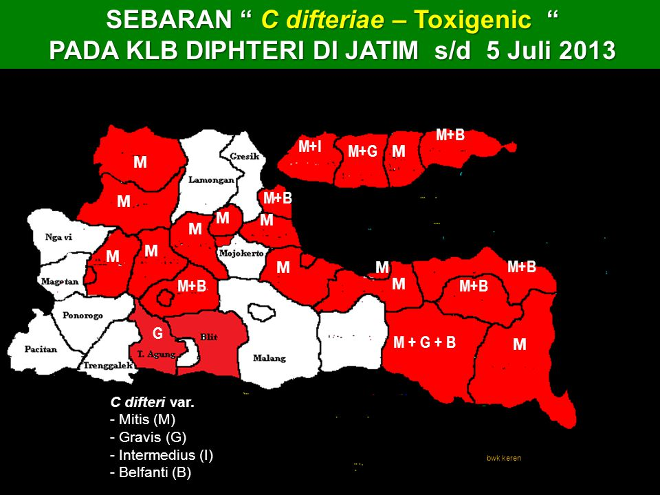 Mapping Area C. diphtheria Patogenic & Toxigenic