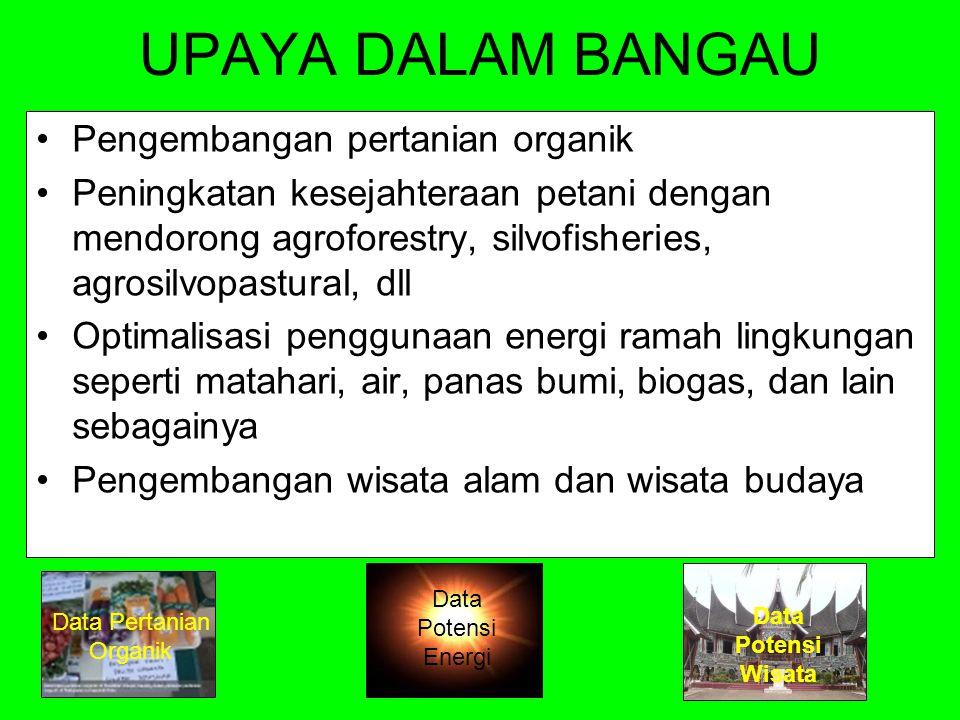 UPAYA DALAM BANGAU Pengembangan pertanian organik