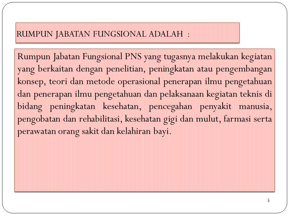 RUMPUN JABATAN FUNGSIONAL ADALAH :