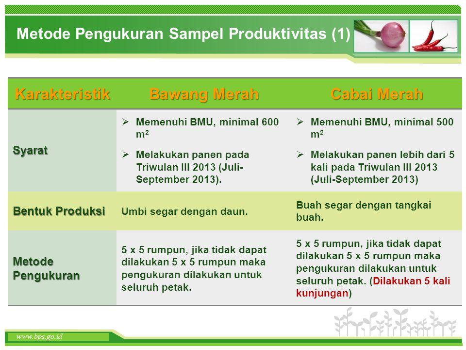 Metode Pengukuran Sampel Produktivitas (1)