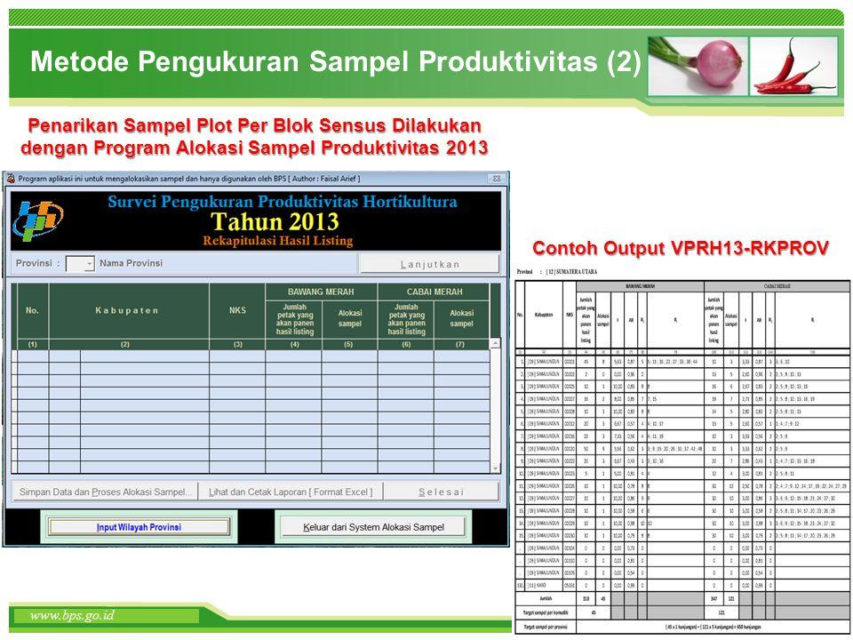 Metode Pengukuran Sampel Produktivitas (2)