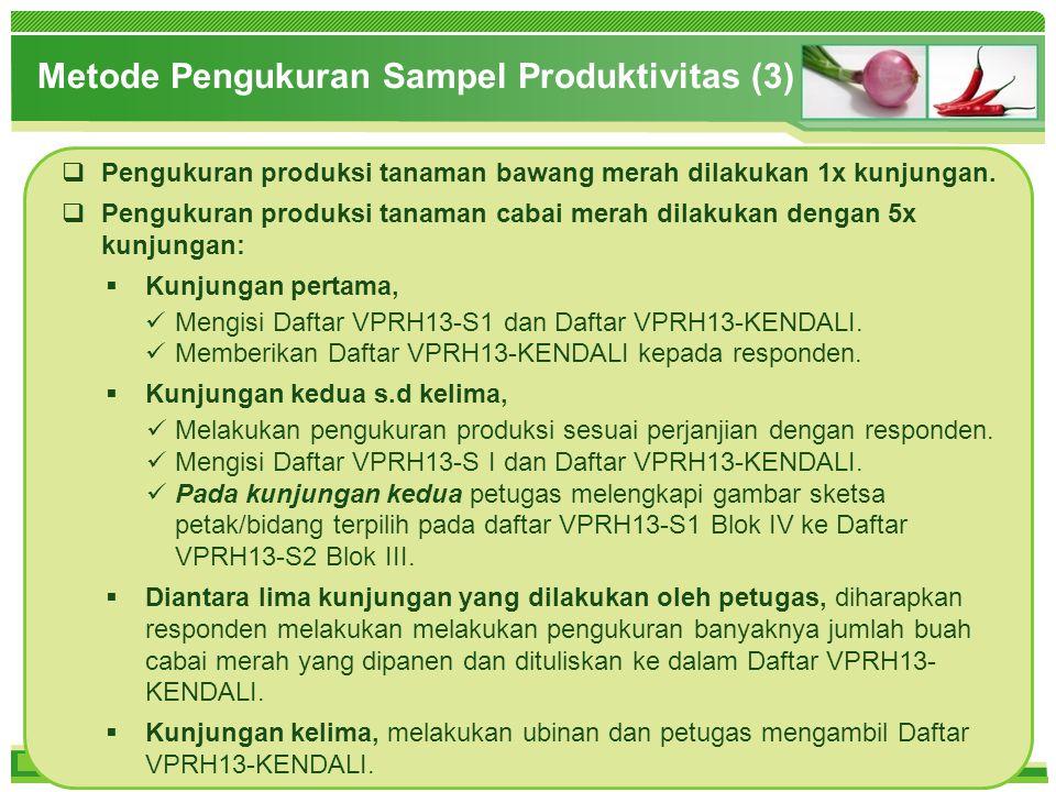 Metode Pengukuran Sampel Produktivitas (3)