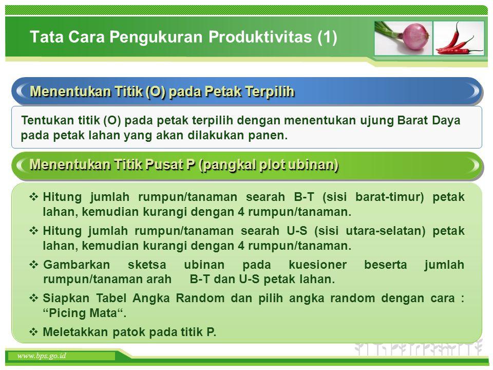 Tata Cara Pengukuran Produktivitas (1)