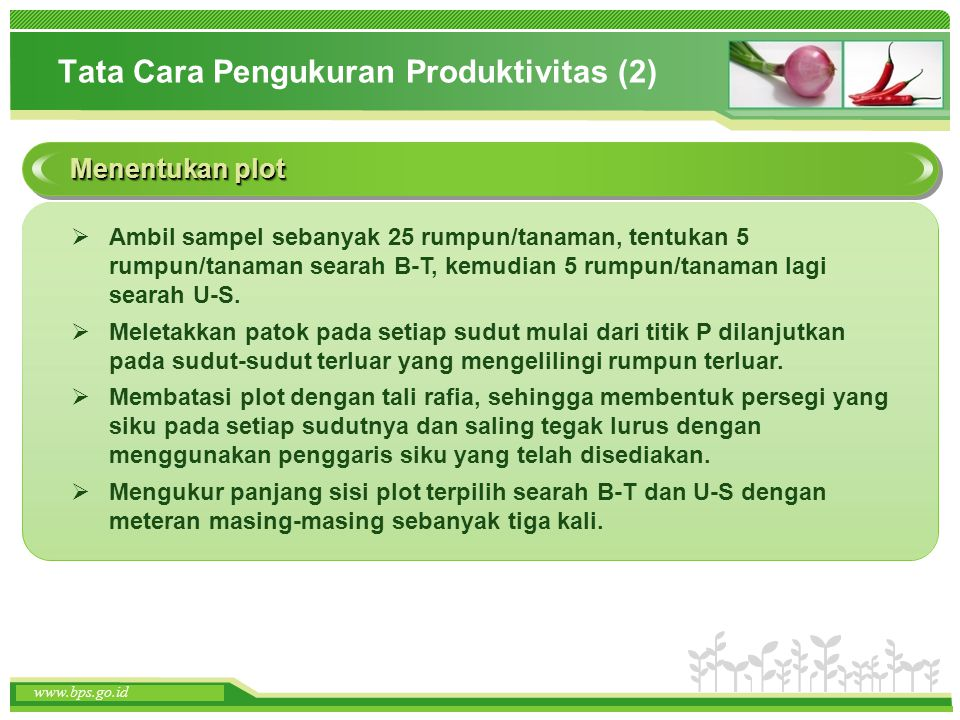 Tata Cara Pengukuran Produktivitas (2)