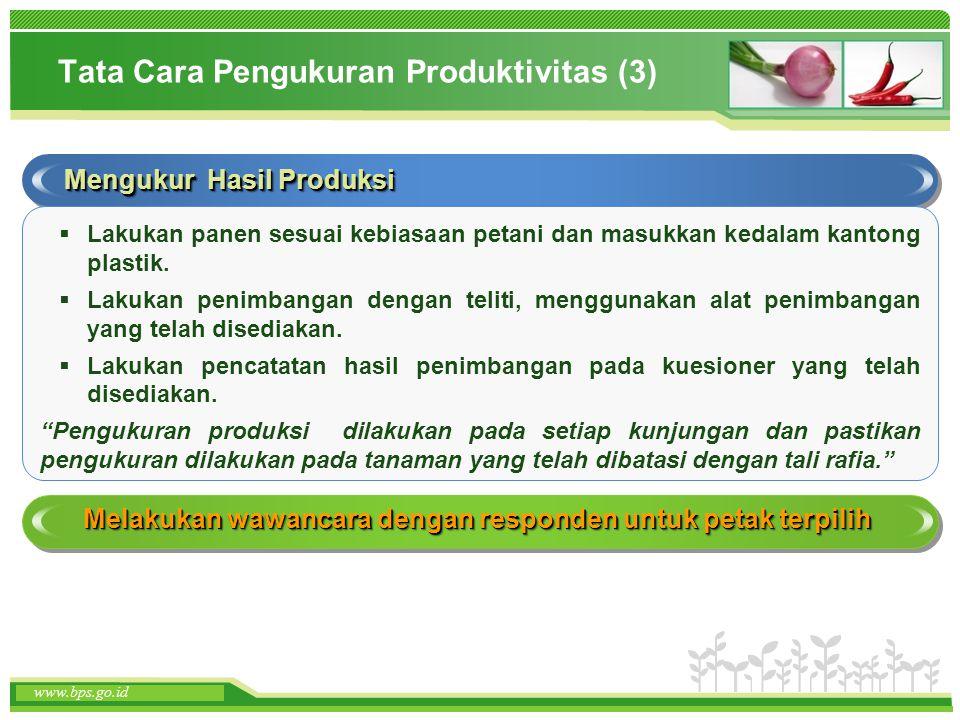 Tata Cara Pengukuran Produktivitas (3)