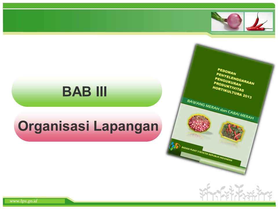 BAB III Organisasi Lapangan