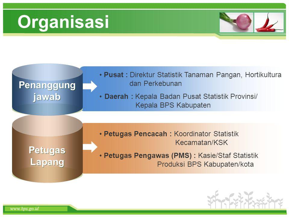 Organisasi Penanggung jawab Petugas Lapang