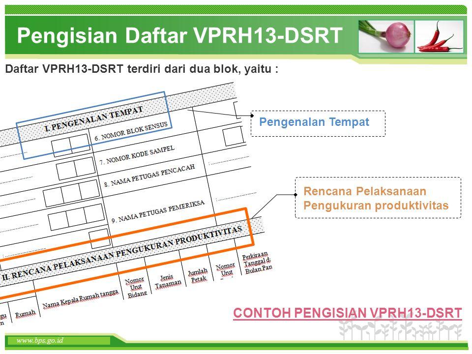 Pengisian Daftar VPRH13-DSRT