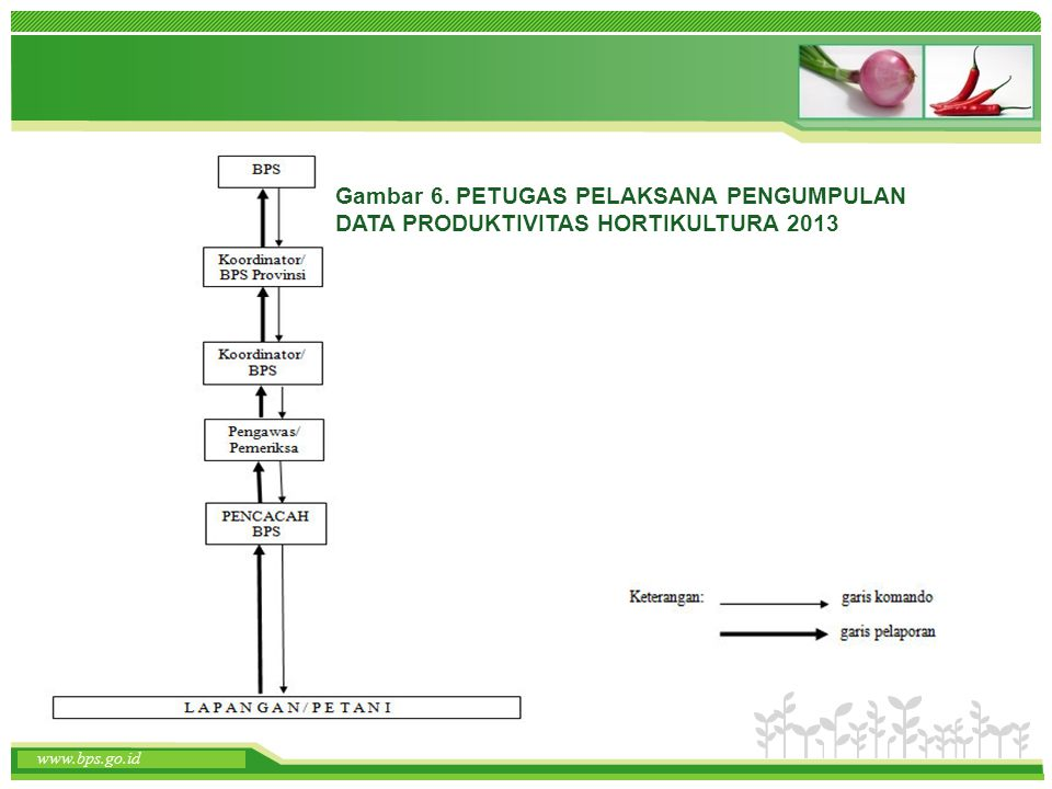 Gambar 6. PETUGAS PELAKSANA PENGUMPULAN DATA PRODUKTIVITAS HORTIKULTURA 2013