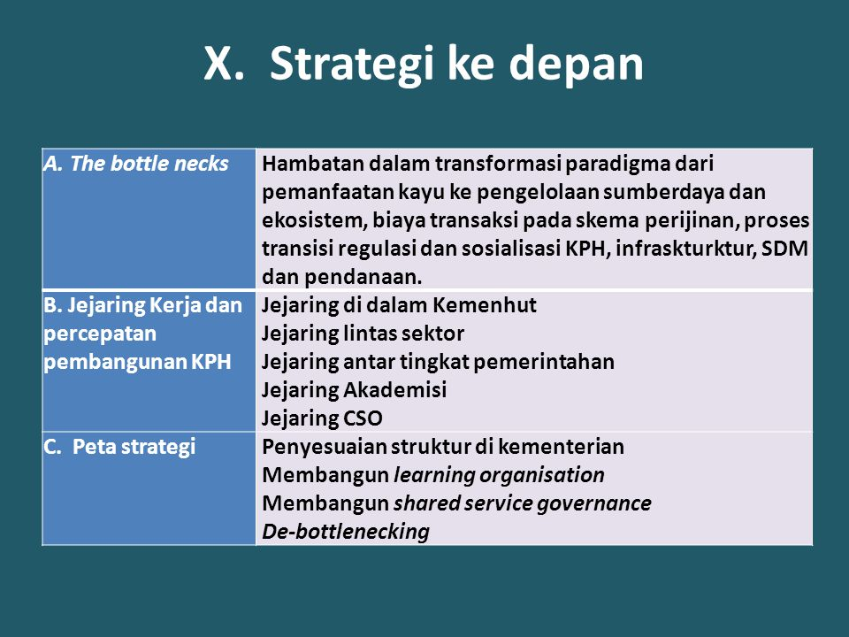 X. Strategi ke depan The bottle necks