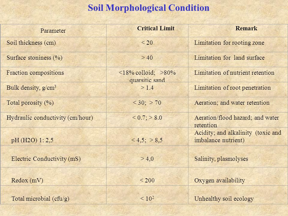 Soil Morphological Condition