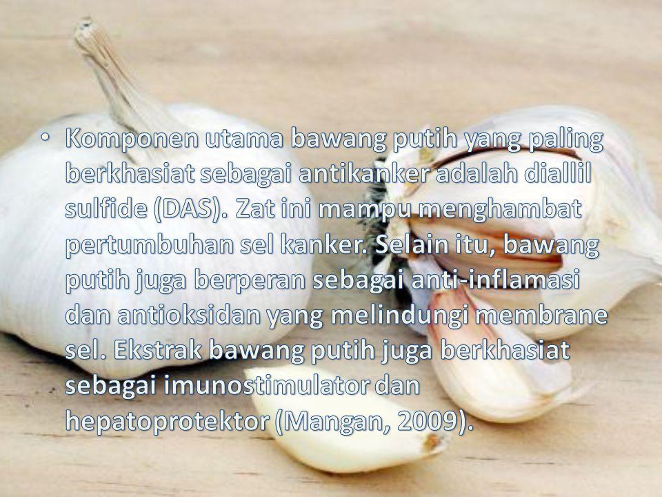 Komponen utama bawang putih yang paling berkhasiat sebagai antikanker adalah diallil sulfide (DAS).