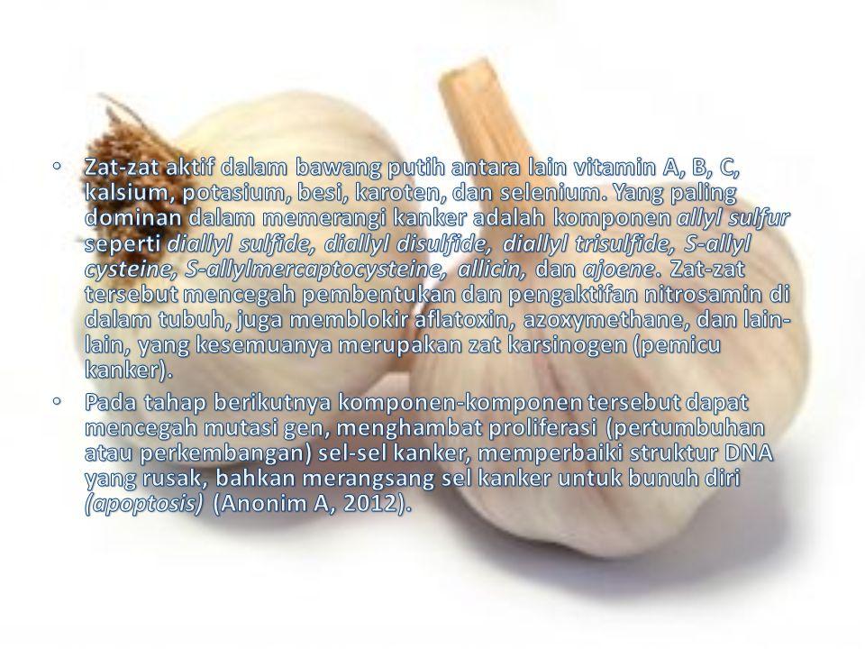 Zat-zat aktif dalam bawang putih antara lain vitamin A, B, C, kalsium, potasium, besi, karoten, dan selenium. Yang paling dominan dalam memerangi kanker adalah komponen allyl sulfur seperti diallyl sulfide, diallyl disulfide, diallyl trisulfide, S-allyl cysteine, S-allylmercaptocysteine, allicin, dan ajoene. Zat-zat tersebut mencegah pembentukan dan pengaktifan nitrosamin di dalam tubuh, juga memblokir aflatoxin, azoxymethane, dan lain-lain, yang kesemuanya merupakan zat karsinogen (pemicu kanker).