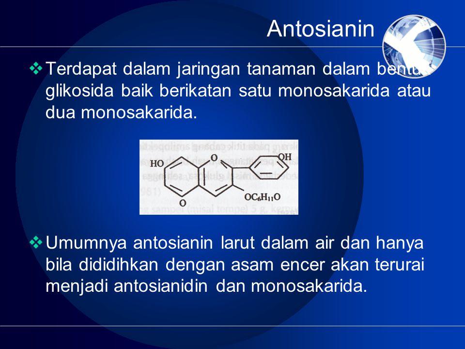 Antosianin Terdapat dalam jaringan tanaman dalam bentuk glikosida baik berikatan satu monosakarida atau dua monosakarida.