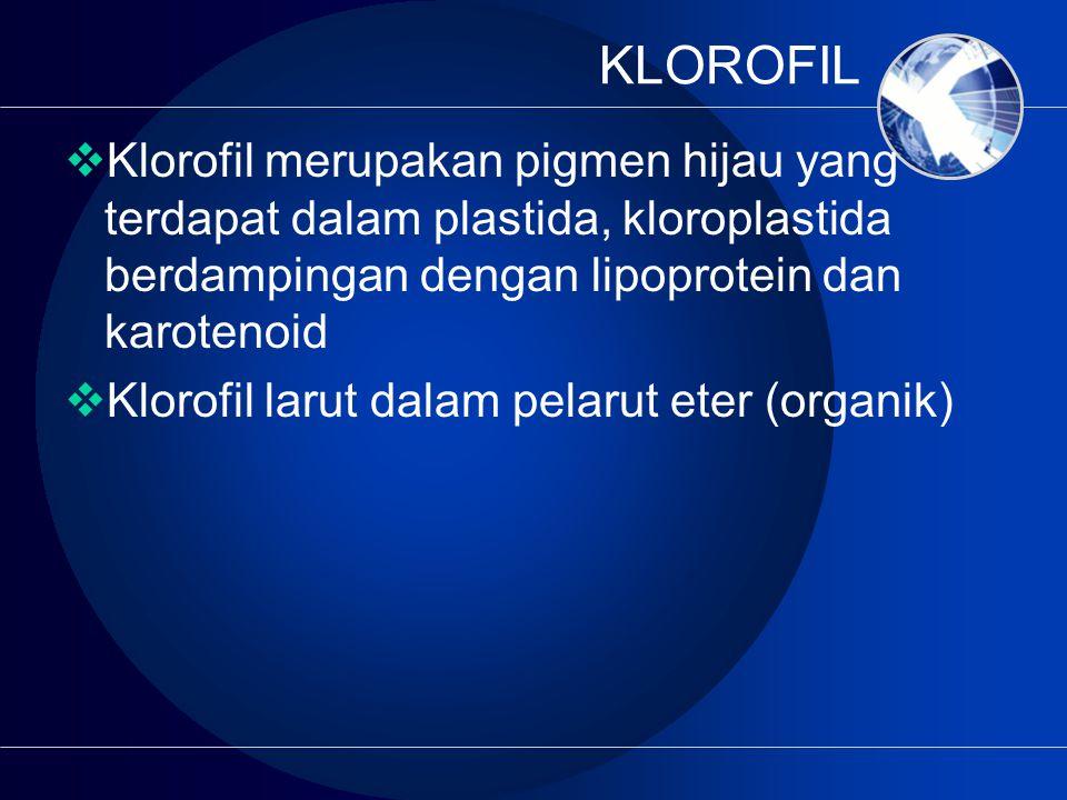 KLOROFIL Klorofil merupakan pigmen hijau yang terdapat dalam plastida, kloroplastida berdampingan dengan lipoprotein dan karotenoid.