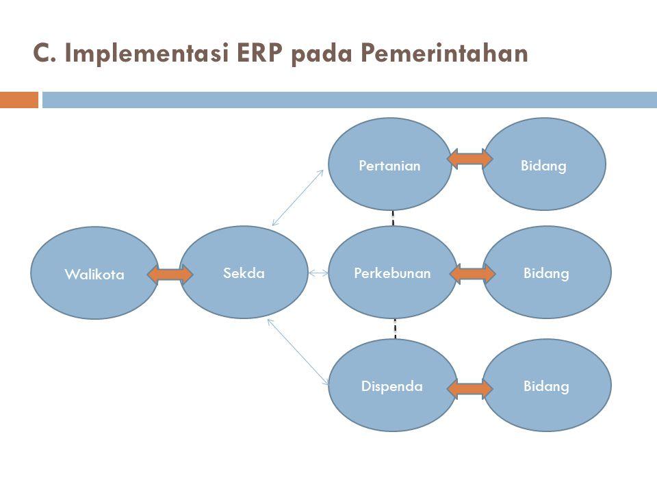 C. Implementasi ERP pada Pemerintahan