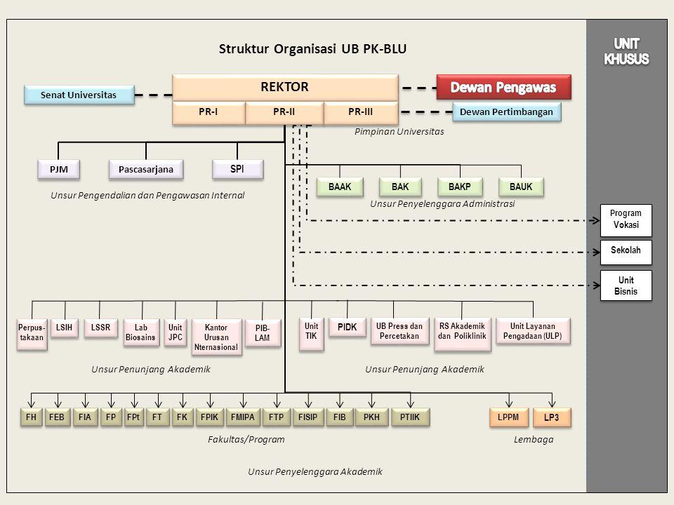 Struktur Organisasi UB PK-BLU