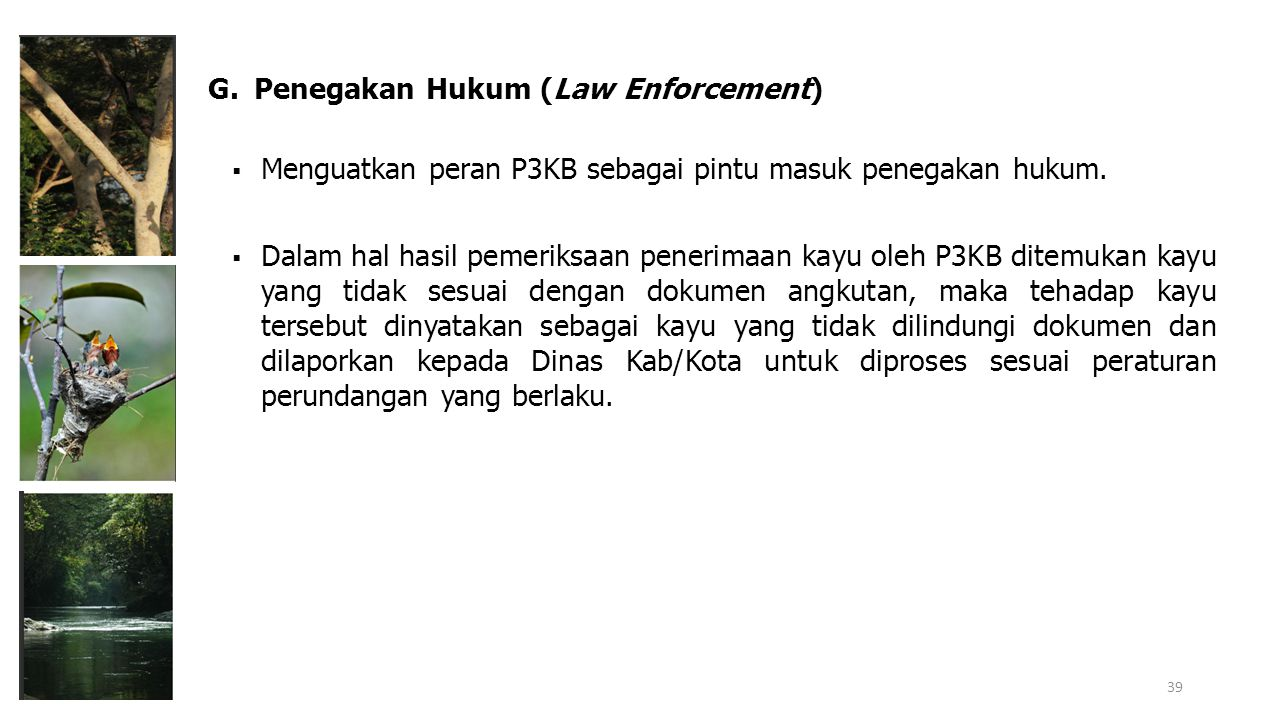 G. Penegakan Hukum (Law Enforcement)