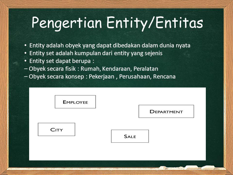 Pengertian Entity/Entitas