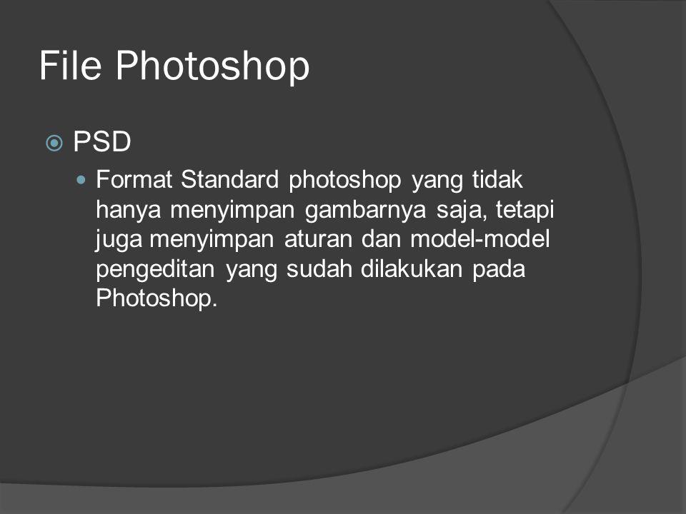 File Photoshop PSD.