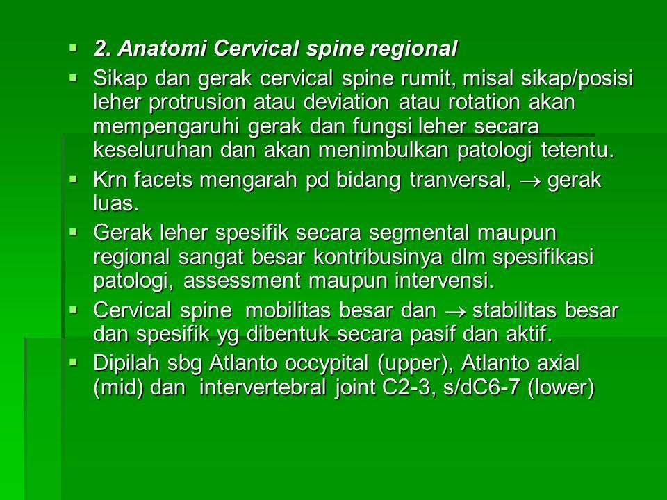 2. Anatomi Cervical spine regional