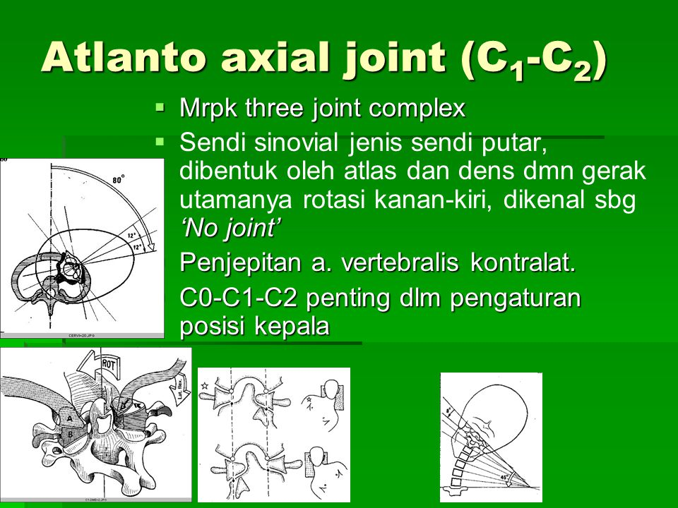 Atlanto axial joint (C1-C2)
