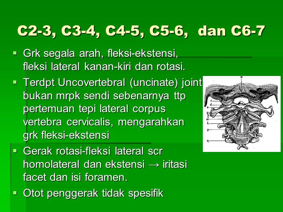 C2-3, C3-4, C4-5, C5-6, dan C6-7 Grk segala arah, fleksi-ekstensi, fleksi lateral kanan-kiri dan rotasi.