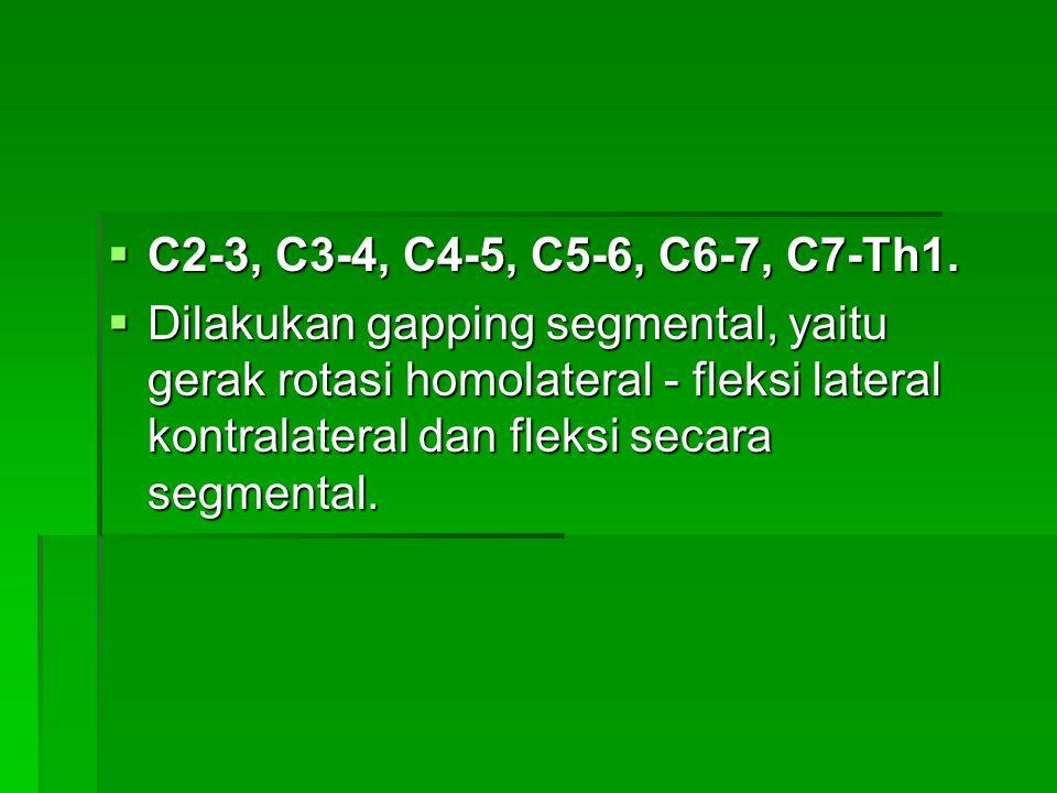 C2-3, C3-4, C4-5, C5-6, C6-7, C7-Th1.
