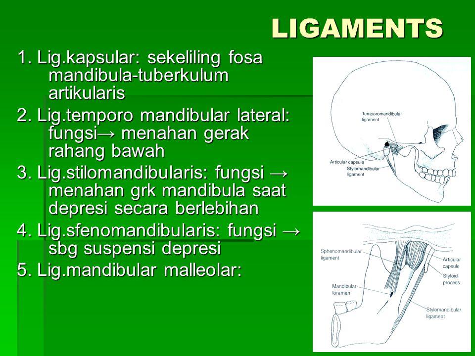 LIGAMENTS 1. Lig.kapsular: sekeliling fosa mandibula-tuberkulum artikularis. 2. Lig.temporo mandibular lateral: fungsi→ menahan gerak rahang bawah.