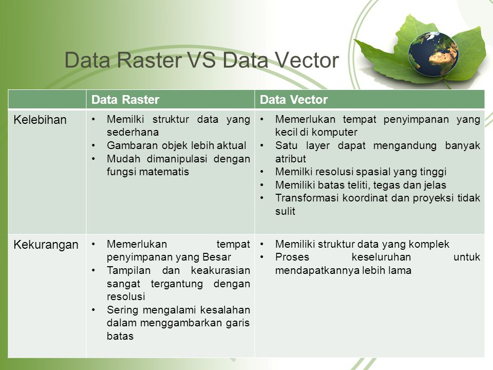 Data Raster VS Data Vector