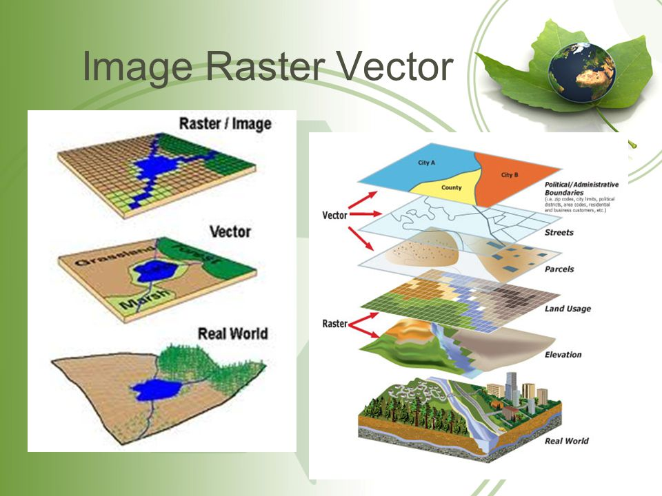 Image Raster Vector