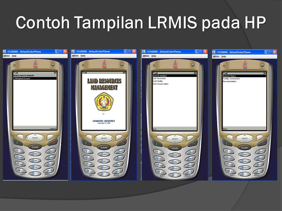 Contoh Tampilan LRMIS pada HP