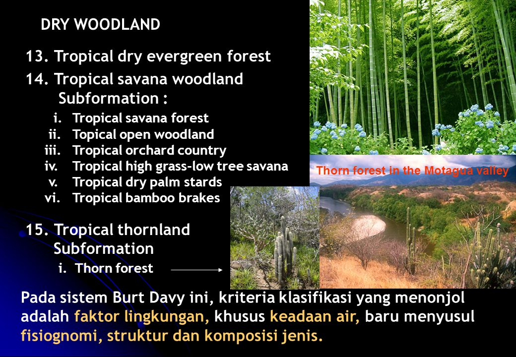 13. Tropical dry evergreen forest 14. Tropical savana woodland