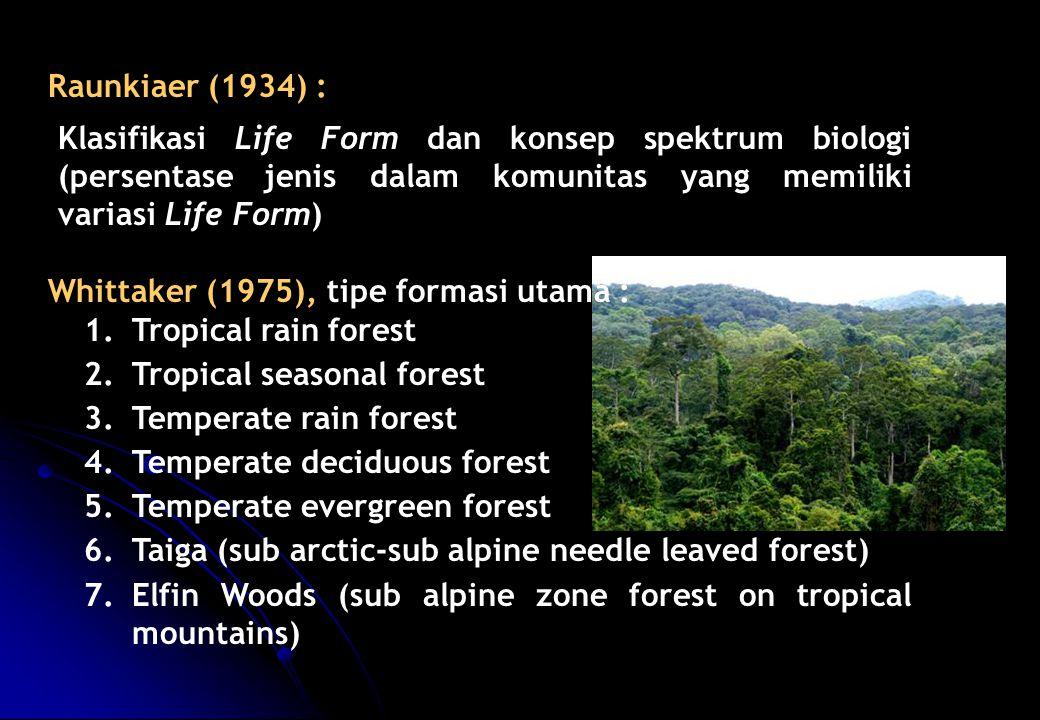 Whittaker (1975), tipe formasi utama : Tropical rain forest