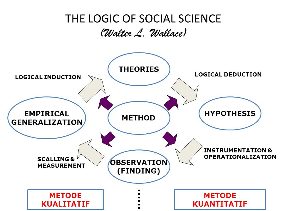 THE LOGIC OF SOCIAL SCIENCE (Walter L. Wallace)