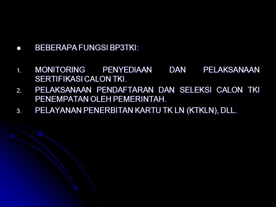 BEBERAPA FUNGSI BP3TKI: