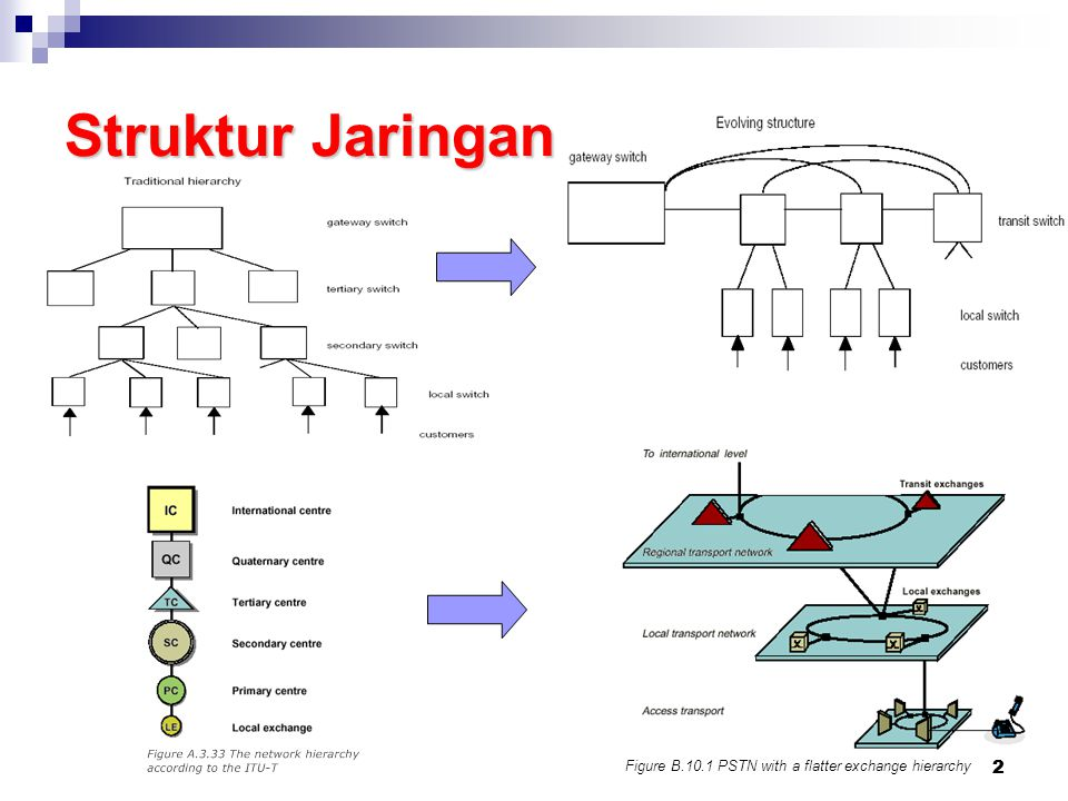 Struktur Jaringan Catatan : 2 2