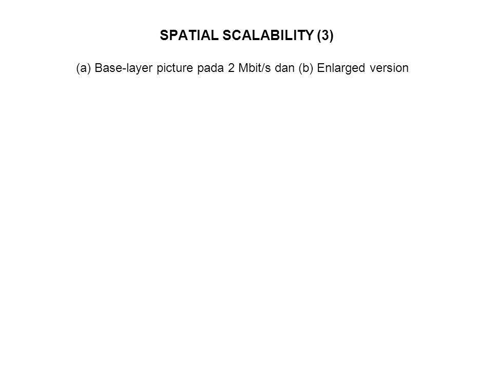 SPATIAL SCALABILITY (3)