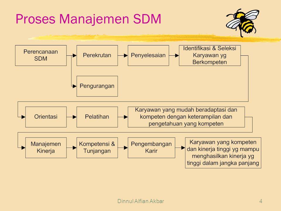 Proses Manajemen SDM Dinnul Alfian Akbar