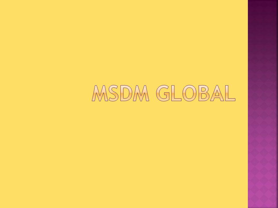 SAP XIII MSDM MSDM Global