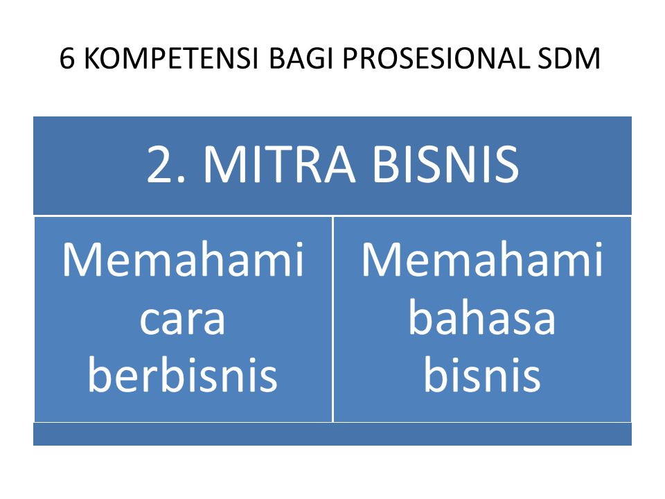 6 KOMPETENSI BAGI PROSESIONAL SDM
