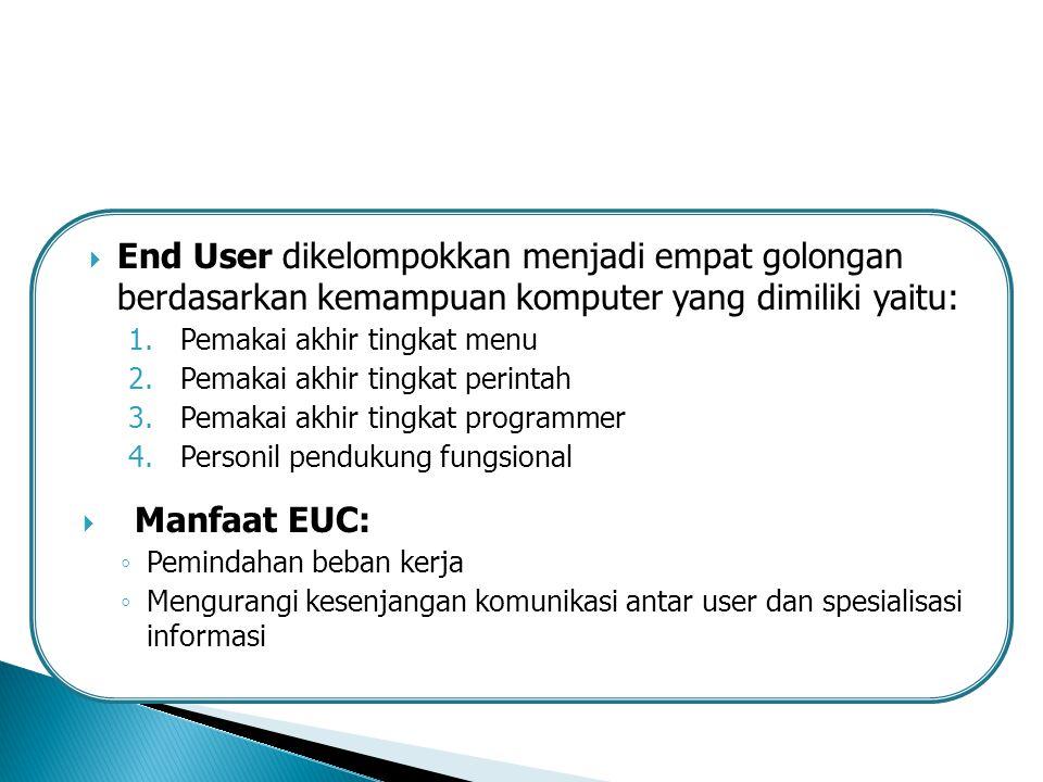 End User dikelompokkan menjadi empat golongan berdasarkan kemampuan komputer yang dimiliki yaitu:
