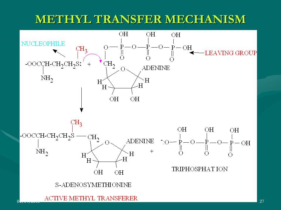 METHYL TRANSFER MECHANISM