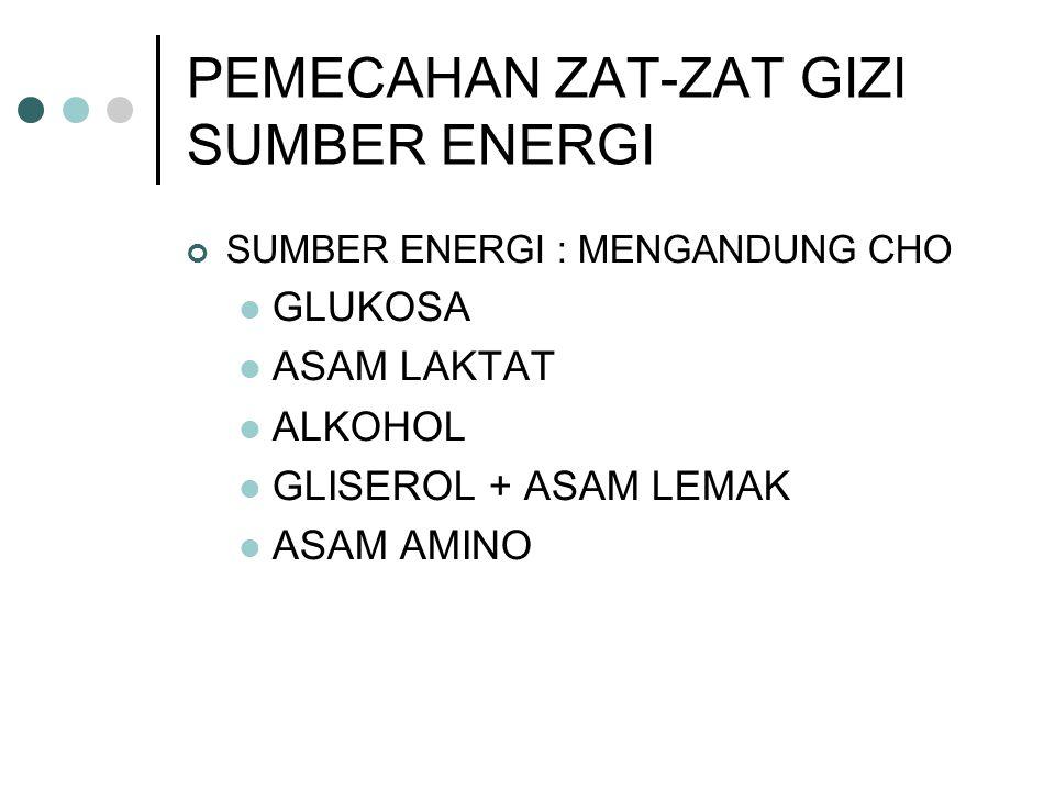 PEMECAHAN ZAT-ZAT GIZI SUMBER ENERGI