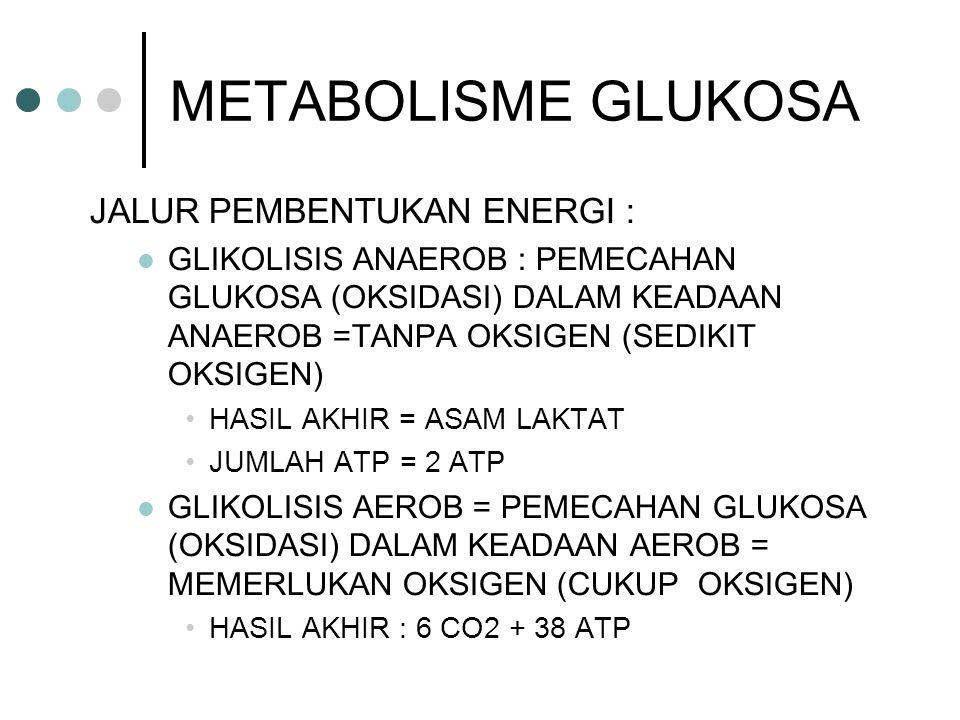 METABOLISME GLUKOSA JALUR PEMBENTUKAN ENERGI :