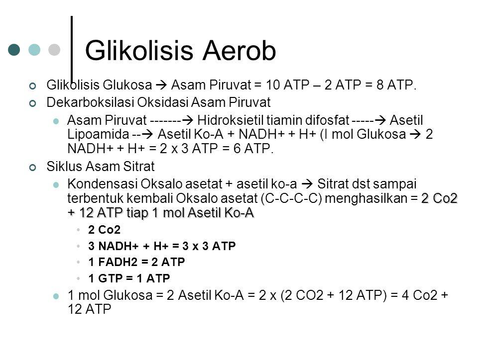 Glikolisis Aerob Glikolisis Glukosa  Asam Piruvat = 10 ATP – 2 ATP = 8 ATP. Dekarboksilasi Oksidasi Asam Piruvat.