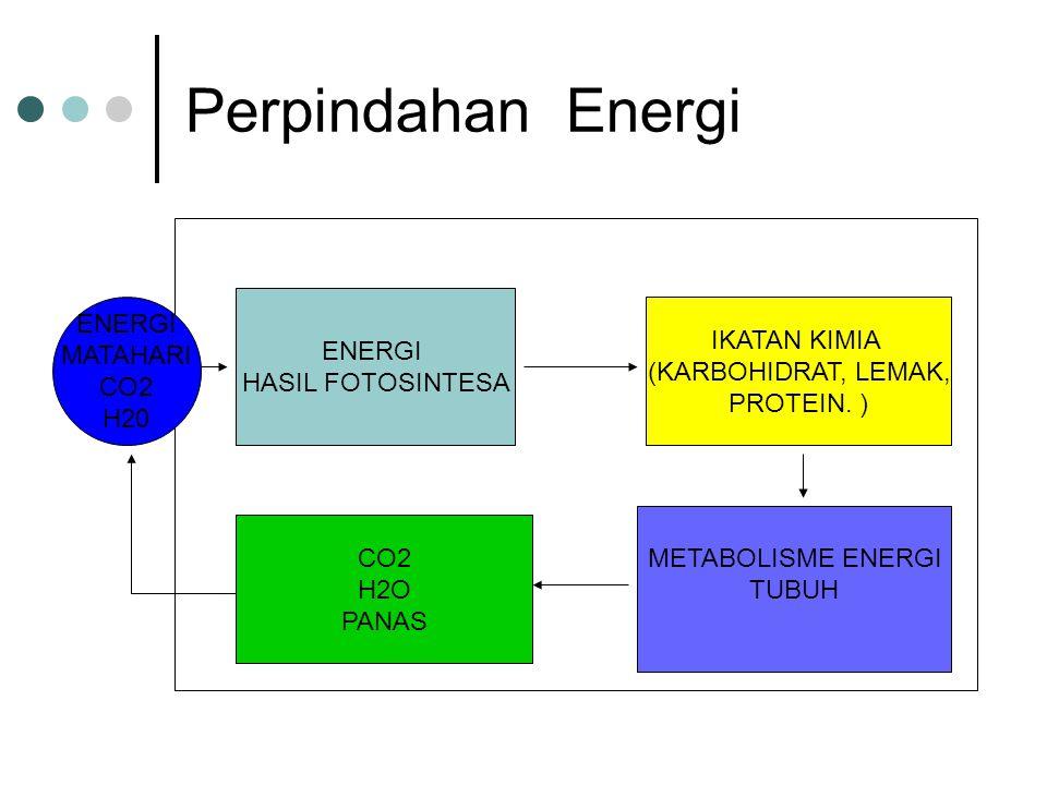 Perpindahan Energi ENERGI ENERGI IKATAN KIMIA MATAHARI