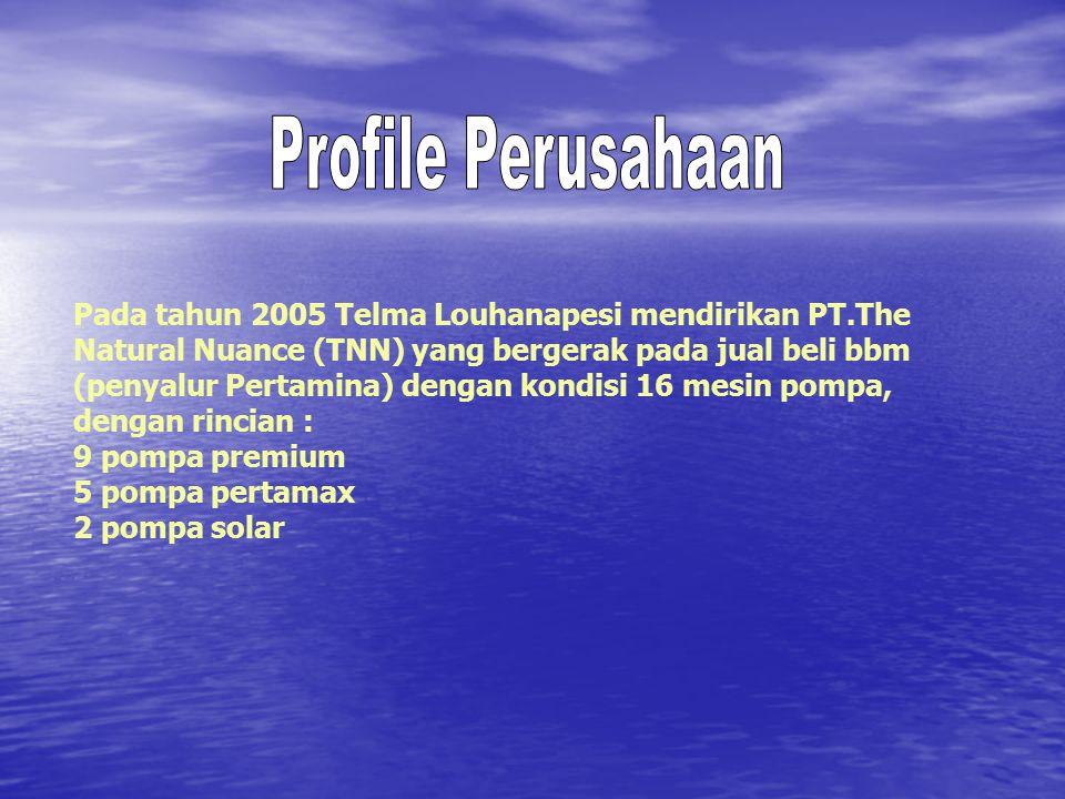 Profile Perusahaan Pada tahun 2005 Telma Louhanapesi mendirikan PT.The